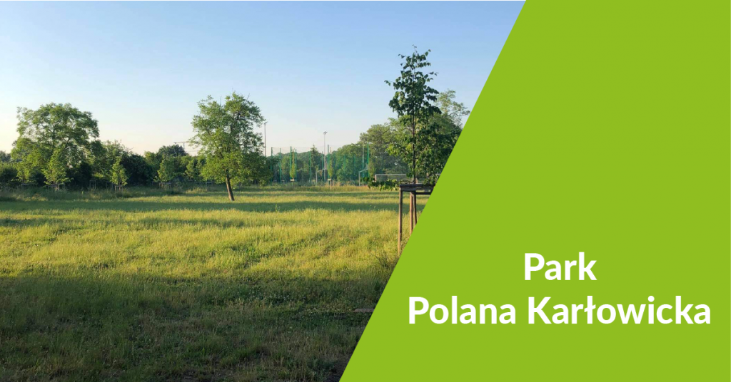 guziki parki Park Polana Karlowicka